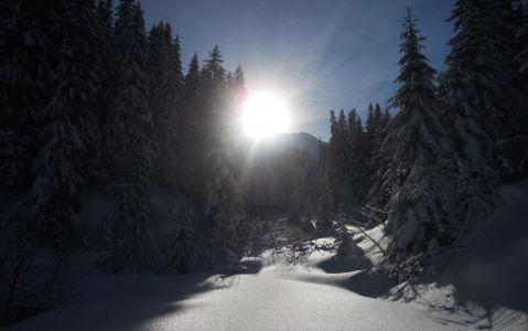 Perçée d'un soleil glacial